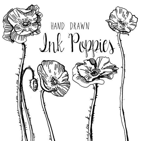 Ms de 25 ideas increbles sobre Dibujo de amapola en Pinterest