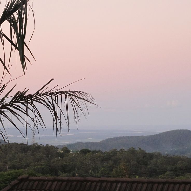 2016 Belles writers' retreat. Tamborine Mountain, QLd  View from the house.