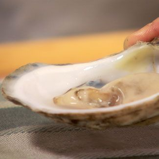 How to Open Raw Oysters