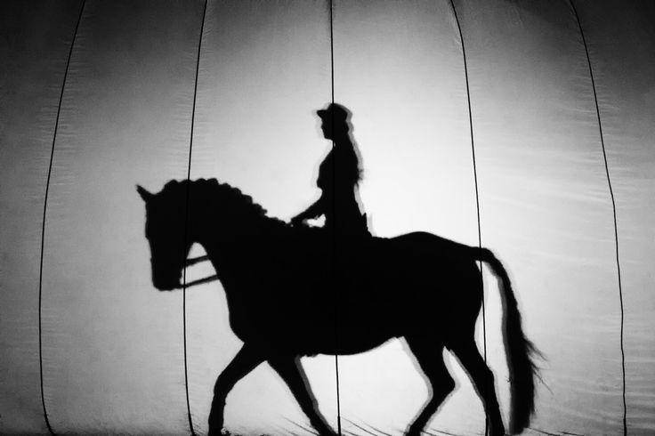 Schatten-Reiterin bei der HansePferd GalaShow