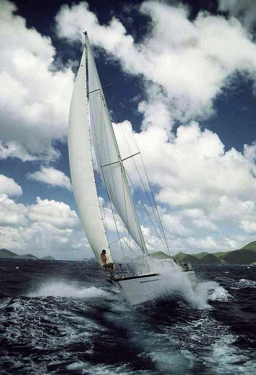 Wiley Economy Sail Charter: 997 Best Images About Navium On Pinterest