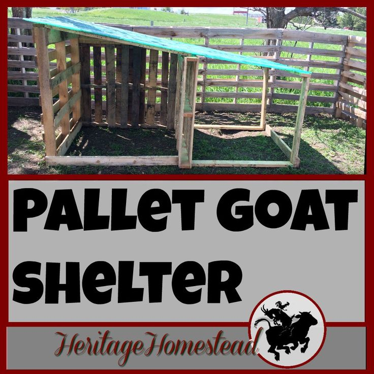 how to build a goat house with wood pallets