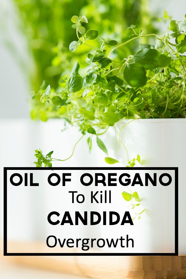 Orally, take three drops of oregano oil mixed into a glass of water. Drink this solution twice daily for up to a week. #oregano #candida