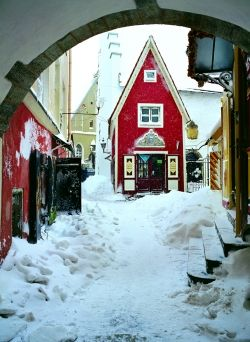 Markets and Events: Estonia - Tallinn in the snow. The white snow contrasting the fabulous bright red #colourfulestonia #visitestonia