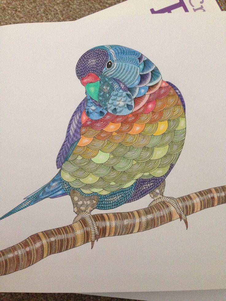 Millie Marotta Colouring SheetsColoring BooksColouring TechniquesTropical