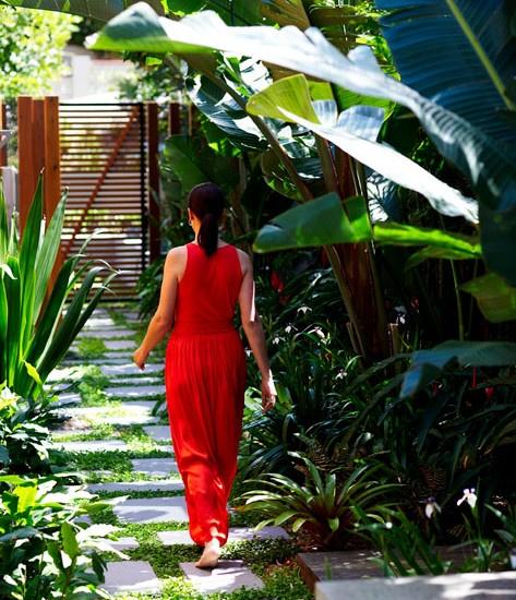 Tropical Home Garden Design Ideas: Tropical Landscape Design, Pictures, Remodel, Decor And