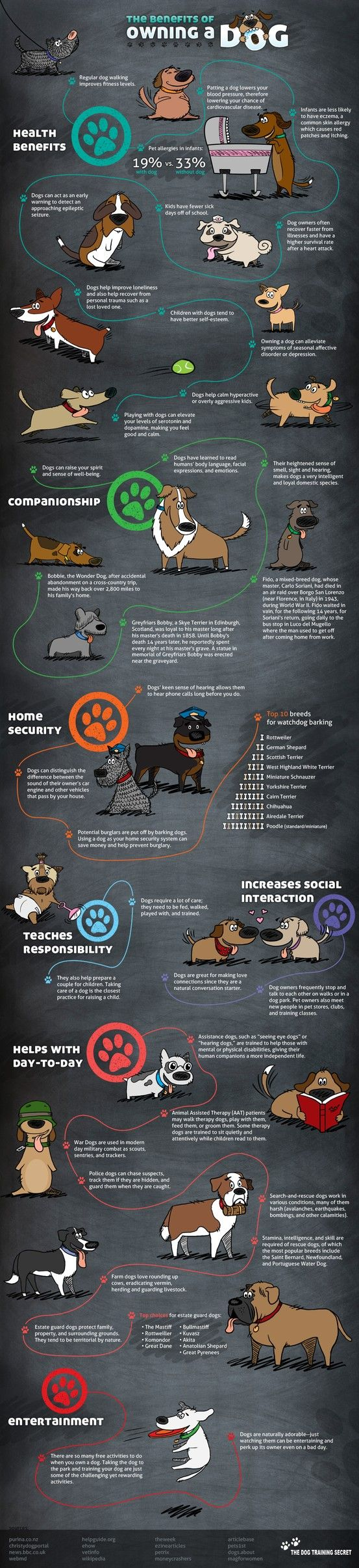 Benefits of owning a Dog! Why not adopt one!!