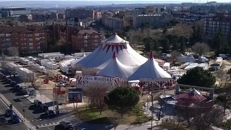 Caos en el Circo Mundial a su paso por Madrid: actuaciones canceladas por impagos a 50 trabajadores