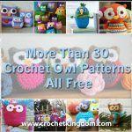 More Than 30 Crochet Owl Patterns All Free http://www.crochetkingdom.com/