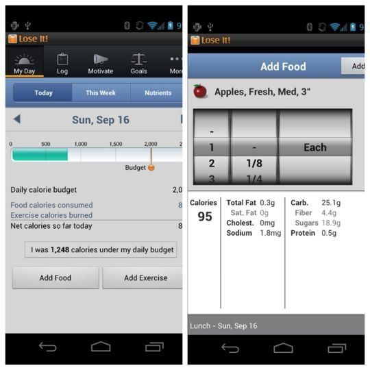 Healthy Living: Calorie Counting Apps — Tablet App Recommendations