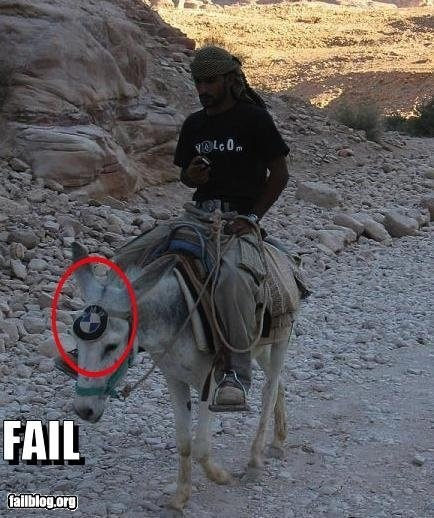 :): Car, Funny Pictures, Donkeys, Funny Stuff, Humor, Funnies, Things, Bmw Donkey