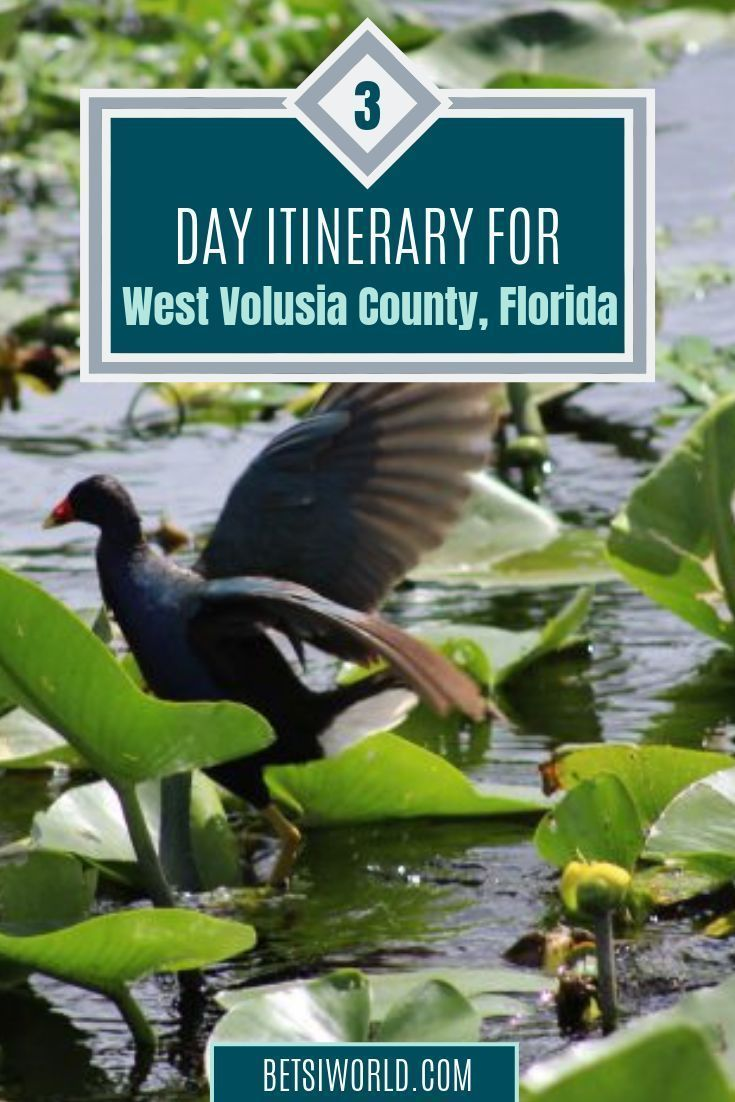 West Volusia Restaurants Open Christmas Day 2020 Three Day Escape to West Volusia County, Florida ~ Betsi's World