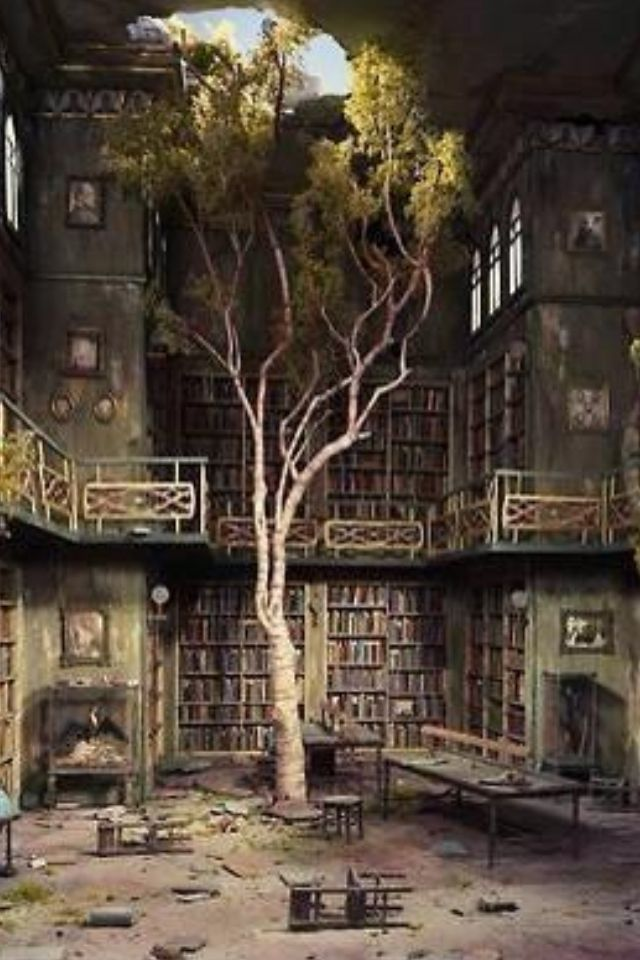 Abandoned library? Not sure if this is real or photoshopped, but its a beautiful metaphor. A tree grows in a library. Paper goes full-cycle.