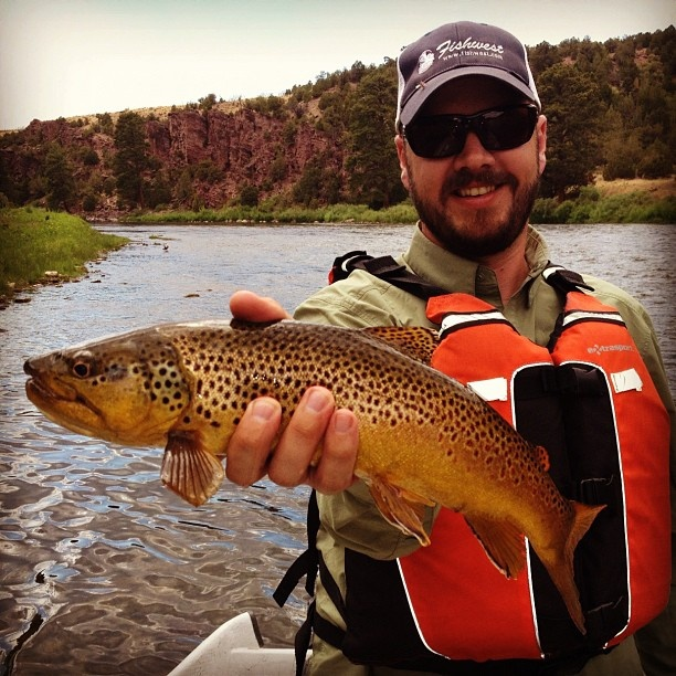 14 best fishing spots of northern california images on for Trout farm fishing near me