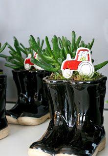 http://holmsundsblommor.blogspot.se/2010/11/traktor-och-stovlar.html Crassula Coral i stövlar
