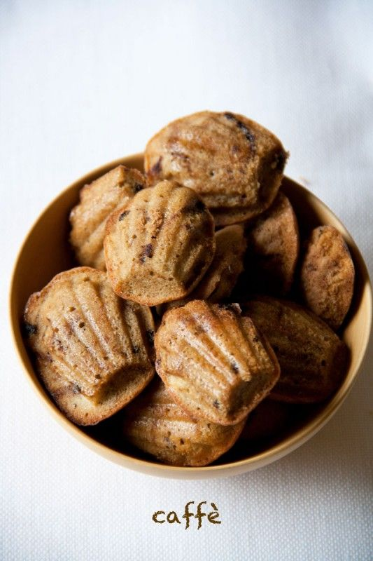 coffee madeleines - google translate
