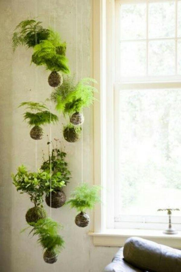 Ber ideen zu bild h ngende designs auf pinterest for Originelle zimmerpflanzen