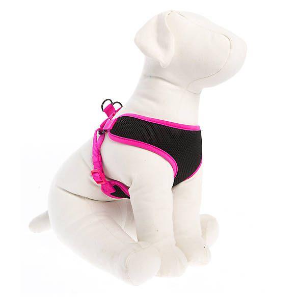 Top Paw Mesh Dog Harness Dog Harnesses Petsmart Dog Harness