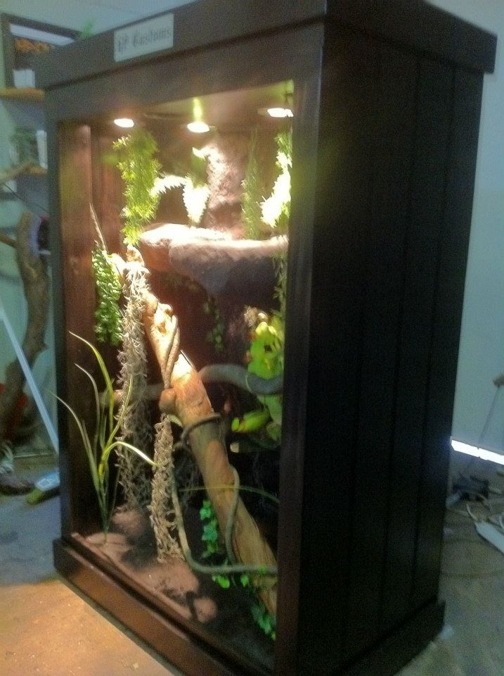 how to make a custom reptile terrarium