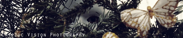 # By www.crypticvisionphotography.com