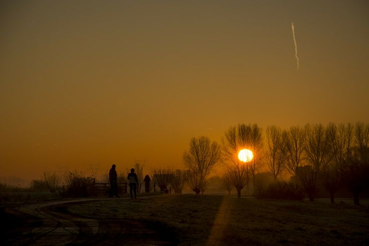 Morning walk by Rob Janssen on 500px