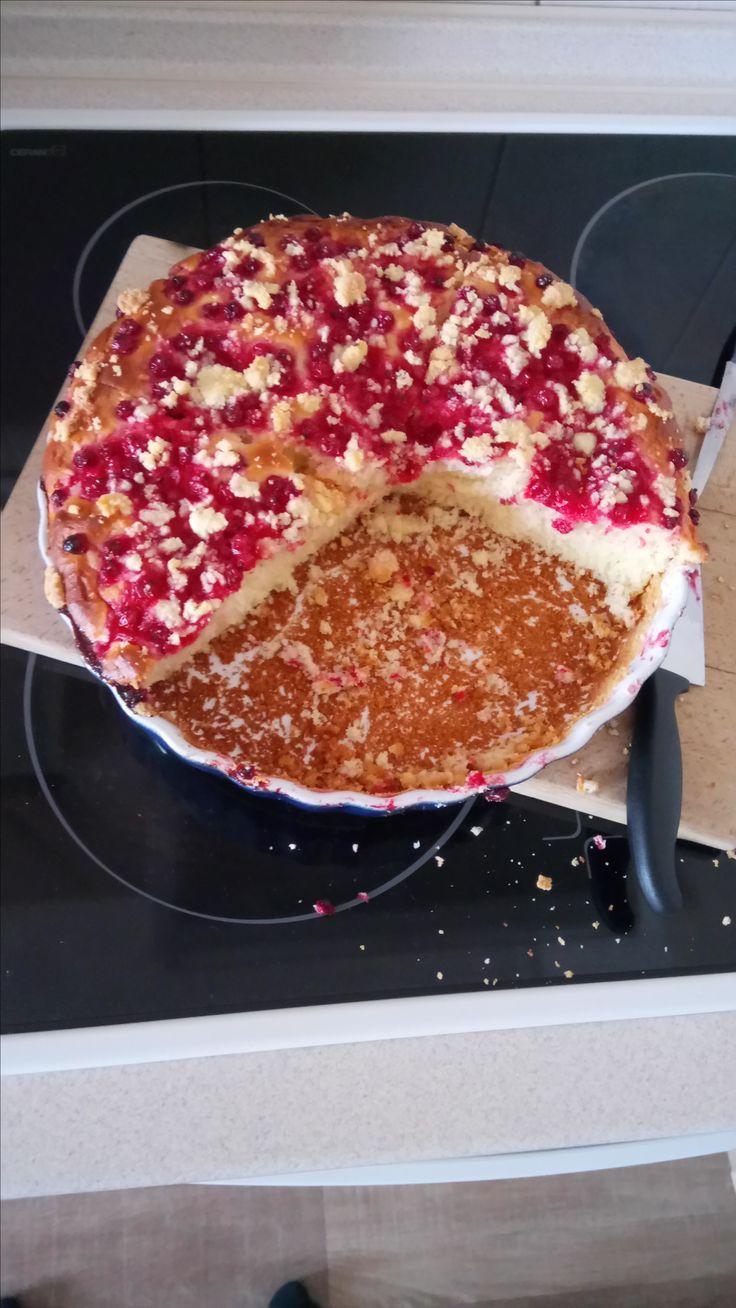 grandma's cake #coffee #coffeelove #iced #macchiato #positive #sunny #coffees #coffeemug #bestshot #earth #pure #freedom #czechrepublic #beautiful #bar #coffeelover #coffeeview #coffeehouse #espresso #cafe #kaffee #kaffeepause #kaffeeliebe #kaffeezeit #kaffeehaus #café #cake #grandma