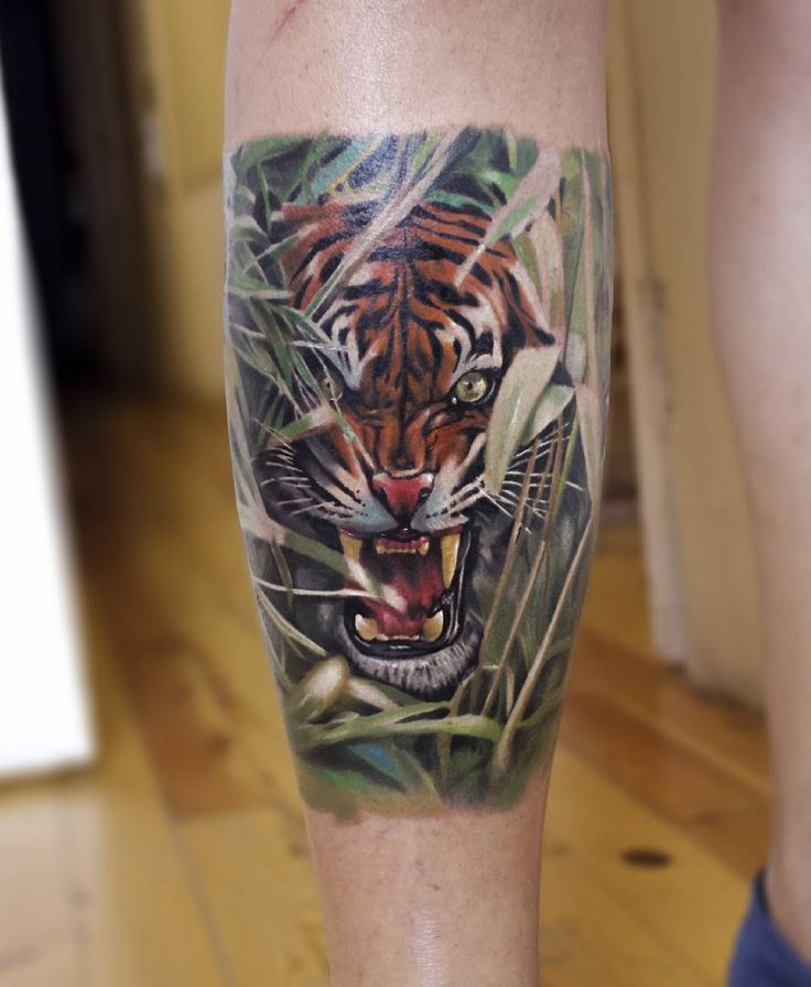 1000 Ideas About Tattoo Fixes On Pinterest: 1000+ Ideas About Tiger Tattoo On Pinterest
