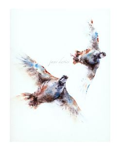 I'm a watercolour artist specialising in pet portraits and British wildlife.