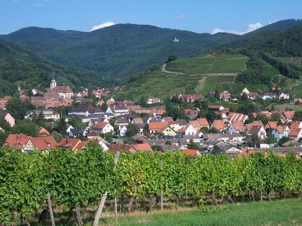 Area near Mittelbergheim. Here's what happened during visits to Nice, in the south of France and Mittelbergheim in the Alsace during their Fete du Vin. Amusing and definitely memorable. http://www.francetraveltips.com/encounters-nice-mittelbergheim-france/