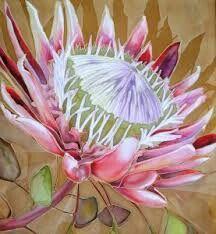 Protea art