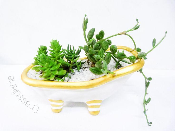 Tina de cerámica bizcocho pintado a mano, color dorado y blanco. Con suculentas, senecio y sedum. Medidas: 18 x 10 cms