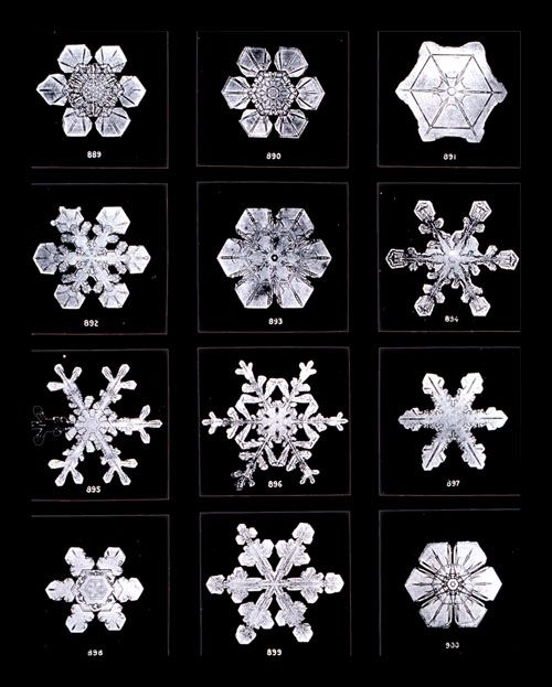 Typology of snowflakes. WilsonBentley photographed over 5,000 snowflakes through a microscope in the late 1800s - early 1900s. Thanks to Ge...