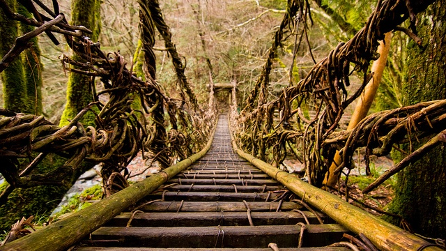 Vine Bridge, Oku-Iya  by cameranew, via Flickr