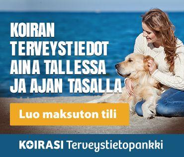 Koira tietoutta! http://www.hauhau.fi/