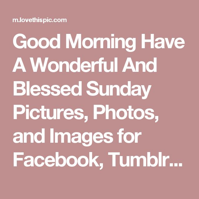 Good Morning Have A Wonderful And Blessed Sunday Pictures, Photos, and Images for Facebook, Tumblr, Pinterest, and Twitter