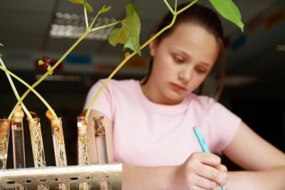 ¿Cuáles son las variables dependientes e independientes en la ciencia para niños? | eHow en Español