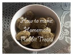 homemade rabbit treats