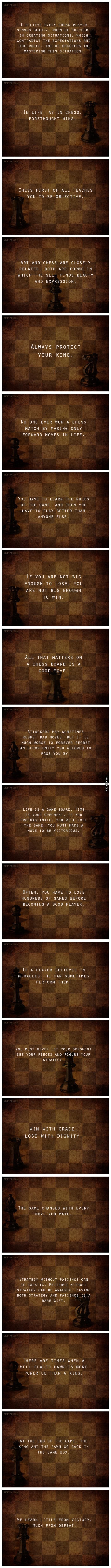 Interesting facts chess can teach you - 9GAG