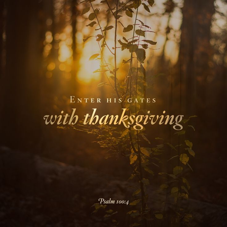 Enter his gates with thanksgiving and his courts with praise; give thanks to him and praise his name.