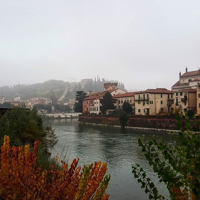#Verona in a rainy day...what to do? Discover my suggestions today on the blog! ⛆☔