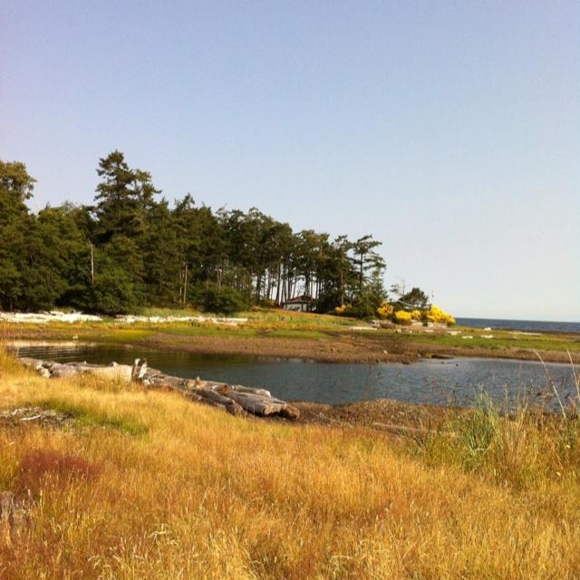 Clamshell Beach Hornby Island BC