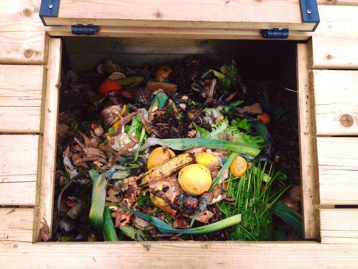 l'idée ? proposer aux étudiants d'une cité scolaire un lieu de compostage avec en cadeau un bio-seau pour chaque volontaire ! Photo : Alex Delbos