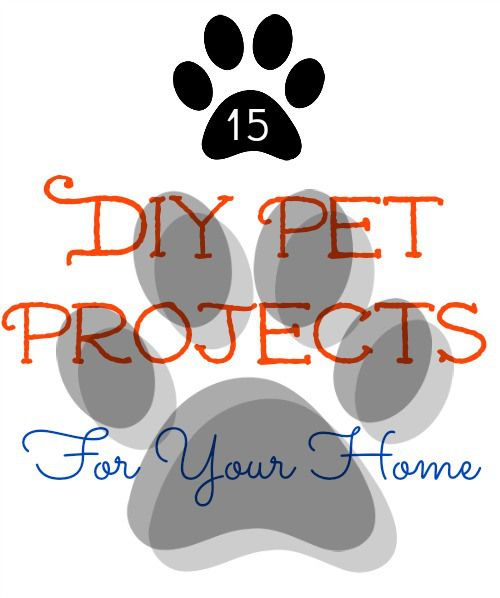 Vaccination Pet Printables