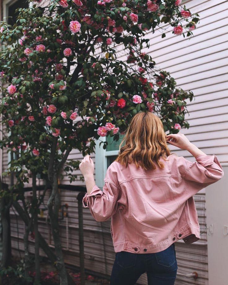 Courtney Halverson (@prettylittlefawn) • Instagram photos and videos