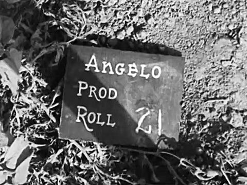 """Sergeant R.H.C. """"Mike"""" Angelo, taken in Falaise"""