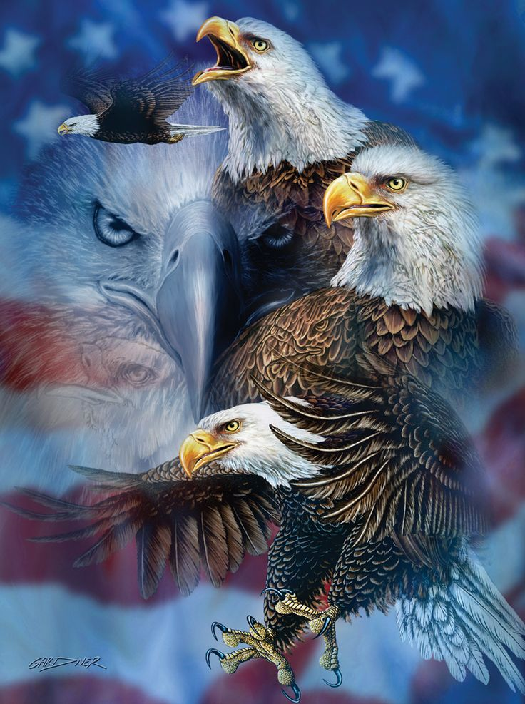 Patriotic Eagles - 1000 piece jigsaw puzzle. Finished size: 20 x 27. Artist: Steven Michael Gardner. Released January 2013.Sunsout puzzles are 100% made in the USAEco-friendly soy-based inksRecycled boardsNot sold in mass-market stores