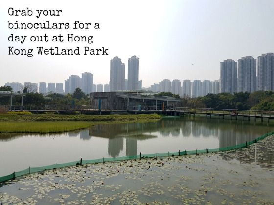 Off the beaten track - a beautiful Hong Kong escape, with views out onto mainland China.