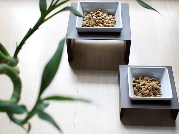 Go Zen for Your Best Friend - 13 Tips for a Stylish and Pet-Friendly Space on HGTV