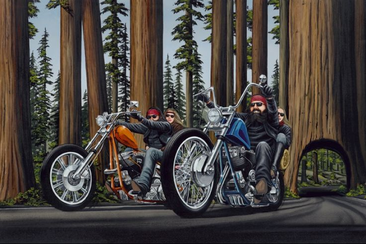 'REDWOOD RUN' BY DAVID MANN                                                                                                                                                                                 More