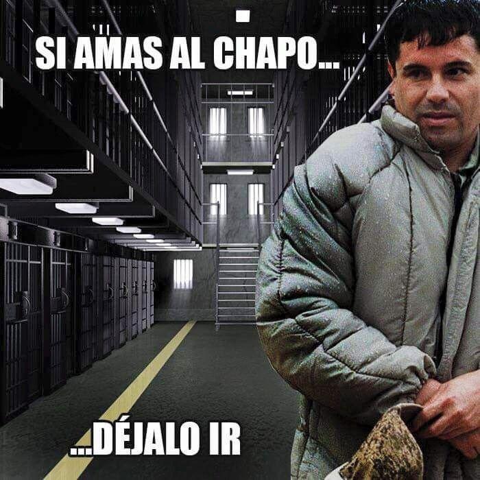 """Los memes de """"El Chapo"""" Guzman - El Nuevo Heraldo: News"""